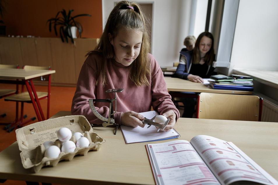 Nach dem Eierlaster-Unfall: Schüler der Klasse 9.2 am Joliot-Curie-Gymnasium Görlitz versuchen sich an der Lösung einer Knobelaufgabe.