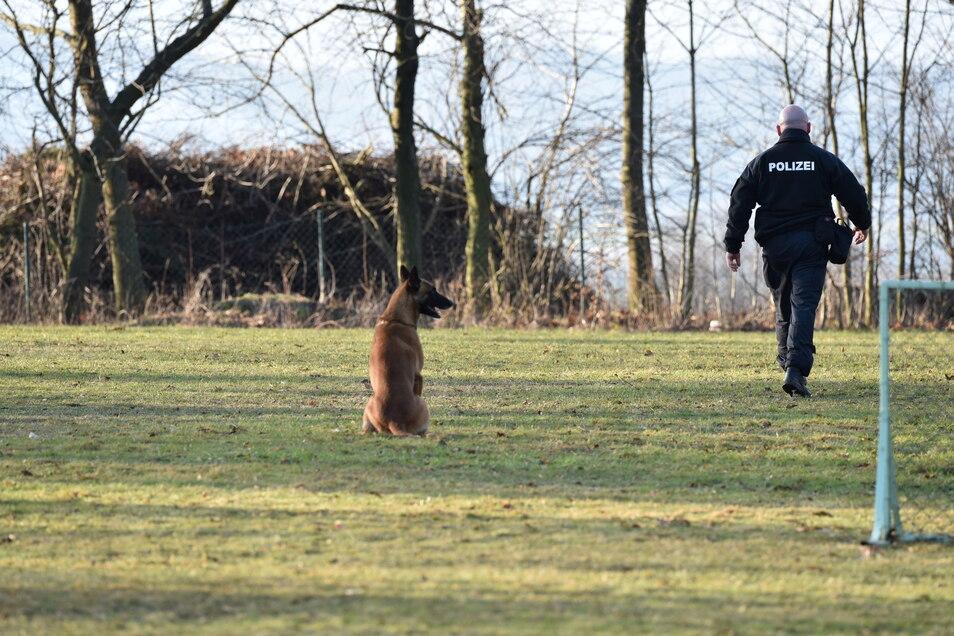 Unter anderem Gehorsam, das Überspringen von Hürden und Ruhe bewahren wurde bei der ersten Prüfung der Hundeführer und ihrer Hunde geprüft.