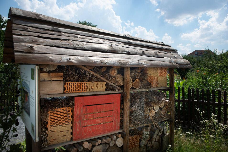 Das imposante Insektenhotel lockt nehmen Bienen auch naturbegeisterte Passanten an.