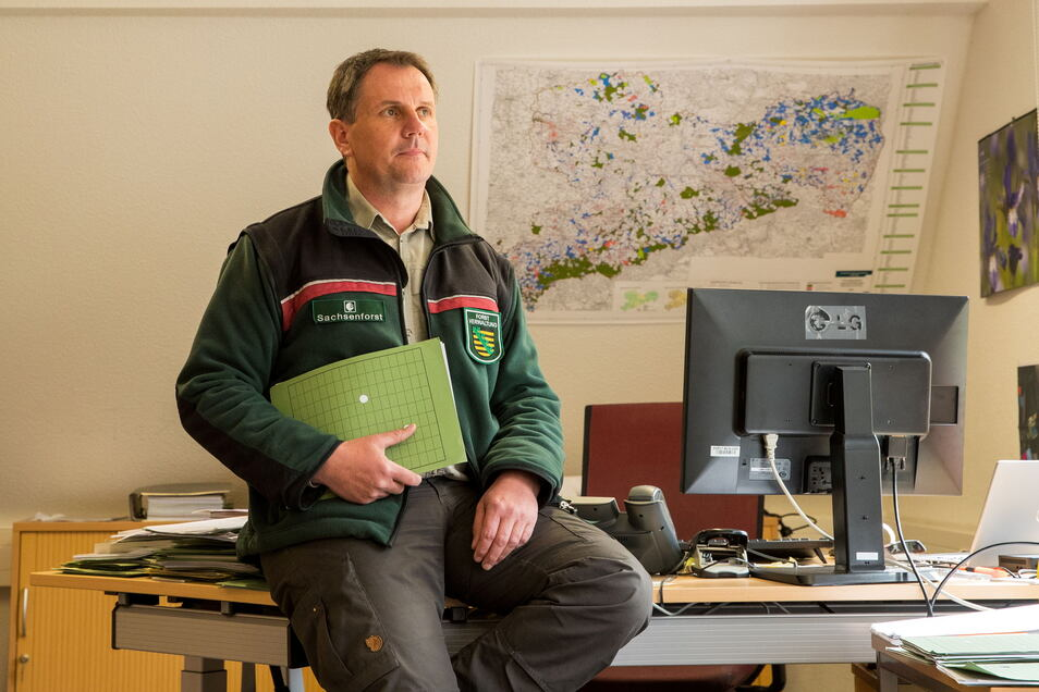 """""""Bewusstsein für regionales Holz steigern."""" Thomas Rother von Sachsenforst fände es gut, wenn regionale Sägewerke mehr Kundschaft hätten."""