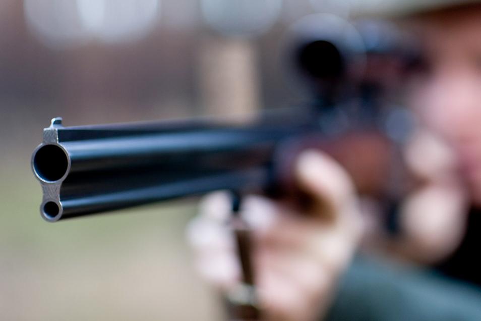 Ein Jäger aus den Niederlanden soll einen Wolf während einer Treibjagd in einem Waldgebiet im Landkreis Potsdam-Mittelmark getötet haben.