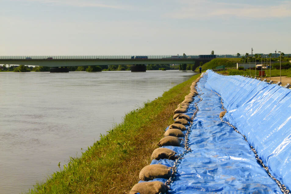 Eine mobile Schutzwand erhöht den Deich am Klärwerk Kaditz. Der Scheitel des Hochwassers im Juni 2013 bleibt knapp unter der Deichkrone.