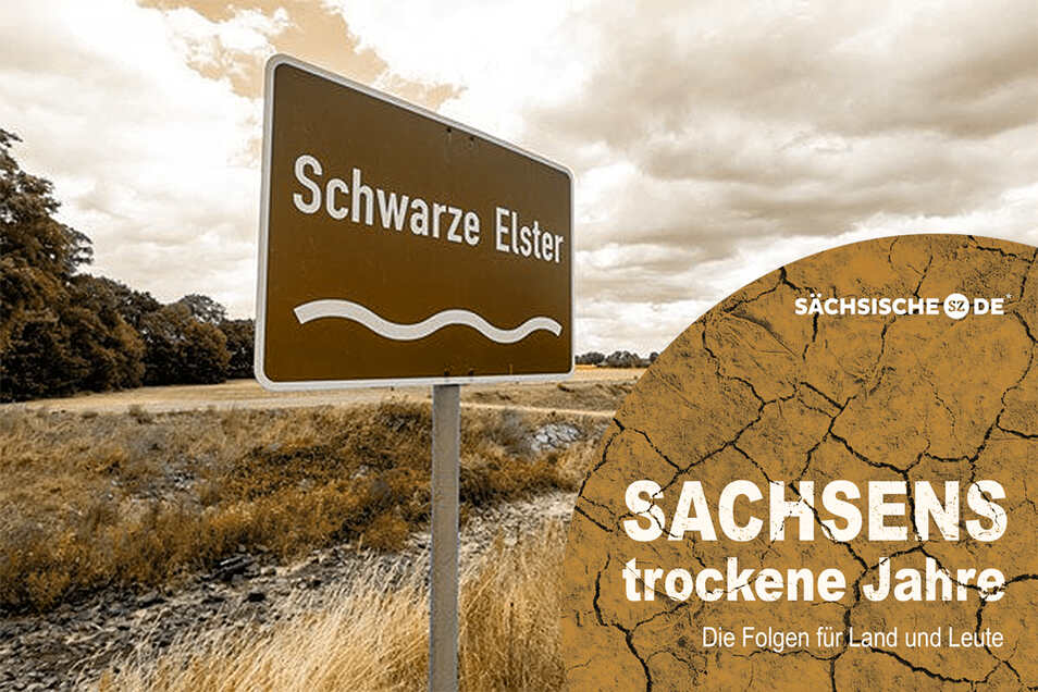 Schon im letzten Jahr führte die Schwarze Elster wie hier bei Senftenberg kein Wasser mehr. In diesem Jahr könnte das wieder der Fall sein.