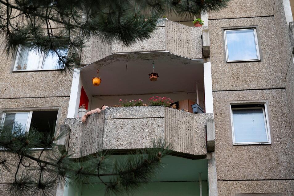 Hier wohnen die Alpenfledermäuse, in den Ritzen von unsanierten Plattenbauten aus DDR-Zeiten in Leipzig-Paunsdorf.
