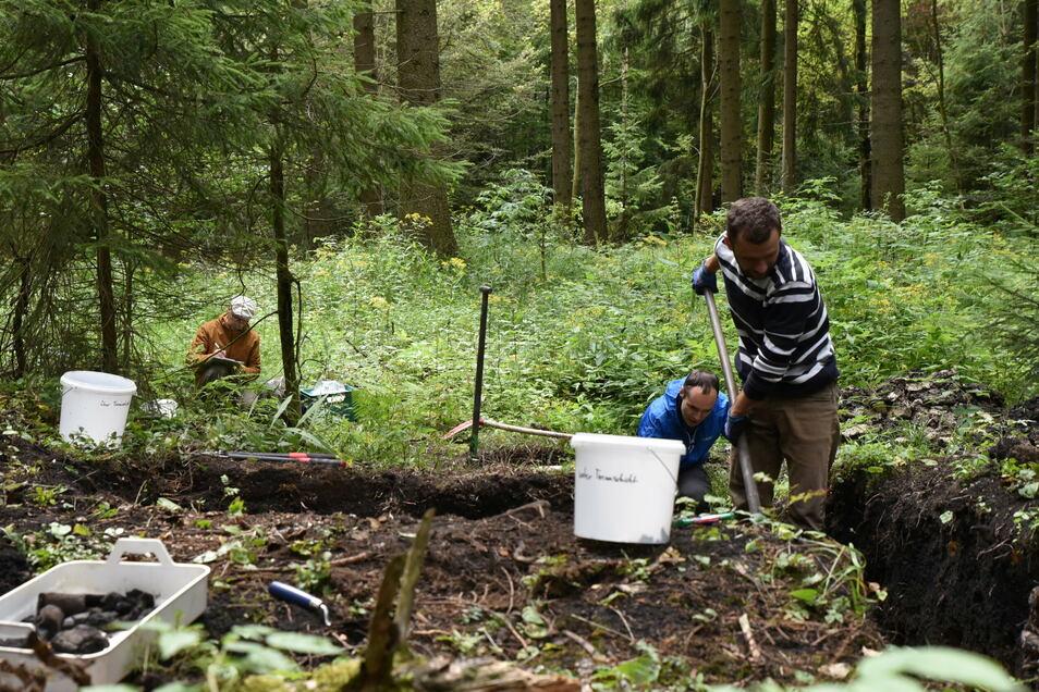 Wissenschaftler aus dem Projekt Archaeoforest untersuchen die Reste eines Holzkohlenmeilers im vorderen Grünwald bei Schönfeld.