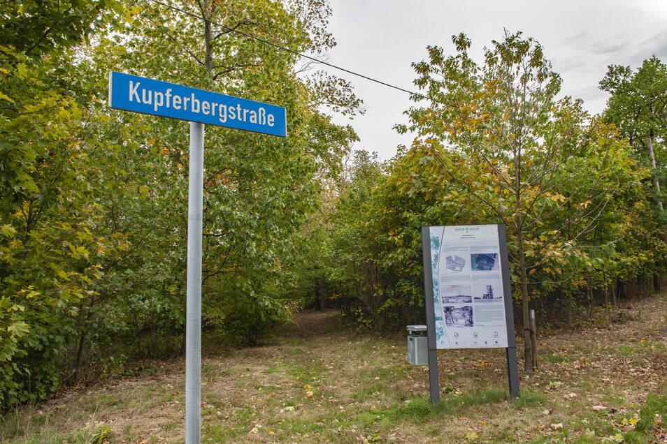 Einen Spaziergang auf den Kupferberg in Großenhain kann man immer machen. Doch der Tag der Parks und Gärten wird hier wie im Stadtpark nicht stattfinden.