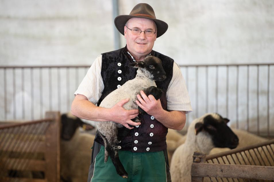 Detlef Rohrmann ist Vorsitzender des Sächsischen Schaf- und Ziegenzuchtverbandes.