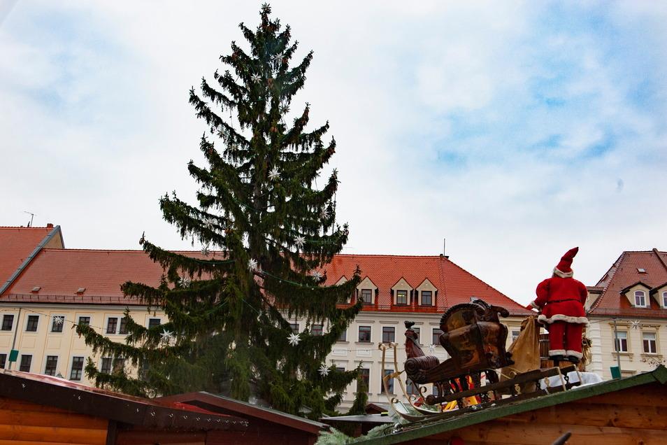 Alle Jahre wieder beginnt die Suche schon dann, wenn gar keiner damit rechnet. Die Suche nach dem geeigneten Weihnachtsbaum. 2019 war sie offenbar sehr erfolgreich.