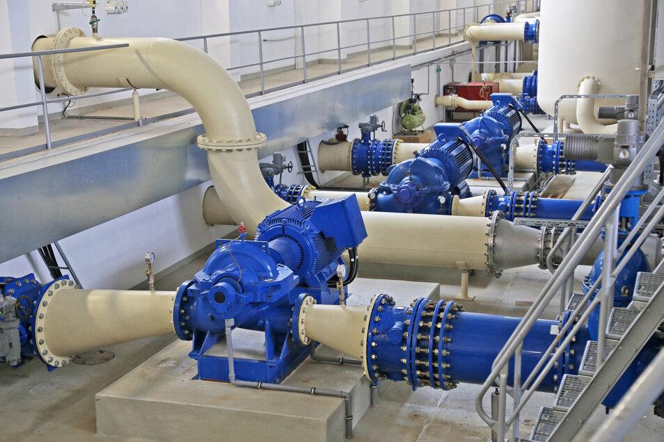Rohre, Motoren, Kabel, Beton: So sieht es im Wasserwerk in Fichtenberg kurz hinter der brandenburgischen Grenze aus. Das Wasserwerk ist das größte, das die WRG betreibt. Die Aufnahme entstand Mitte 2018.