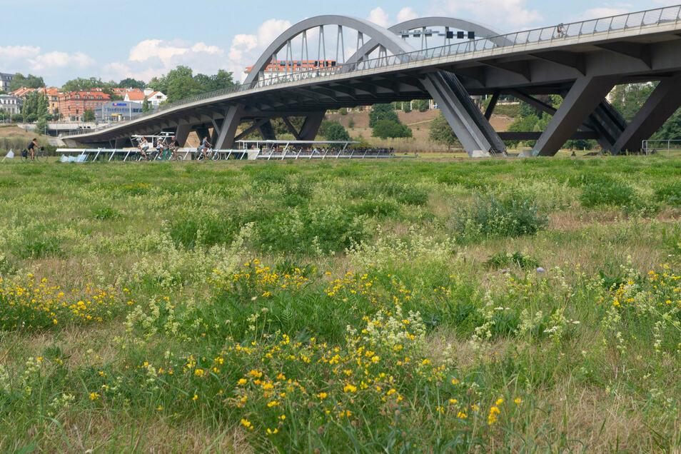 Auf der Neustädter Elbseite an der Waldschlösschenbrücke hat ein Dieb am Sonntag Geld gestohlen.