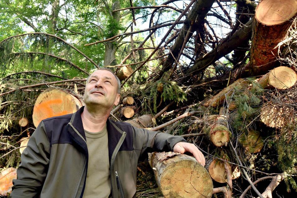 Revierförster Matthias Forgber versucht trotz großer Waldschadens-Probleme positiv in die Zukunft zu schauen.