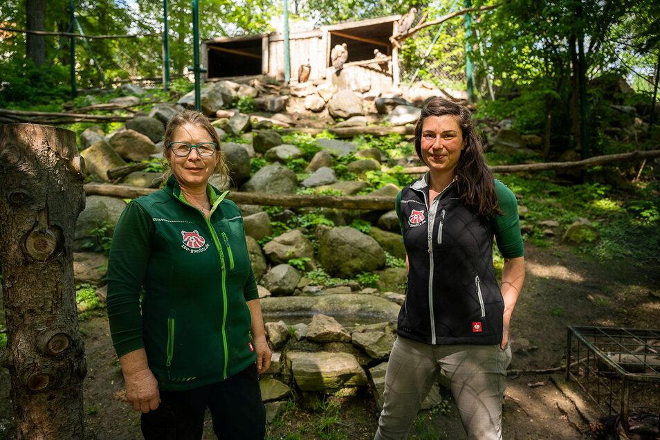 """Zookuratorin Catrin Hammer und Zoopädagogin Isa Plath unter Geiern: Das Projekt """"Tierzucht funktioniert"""" im Tierpark Görlitz, die Vögel haben Nachwuchs."""