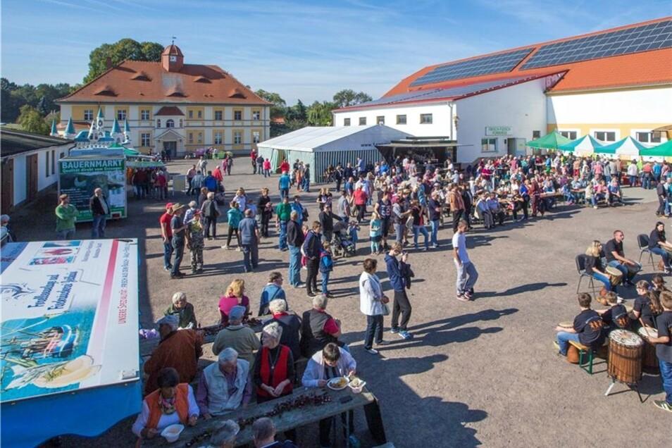 Wie die Schweine leben, davon konnten sich Besucher beim Hoffest am vorigen Wochenende einen Eindruck verschaffen.