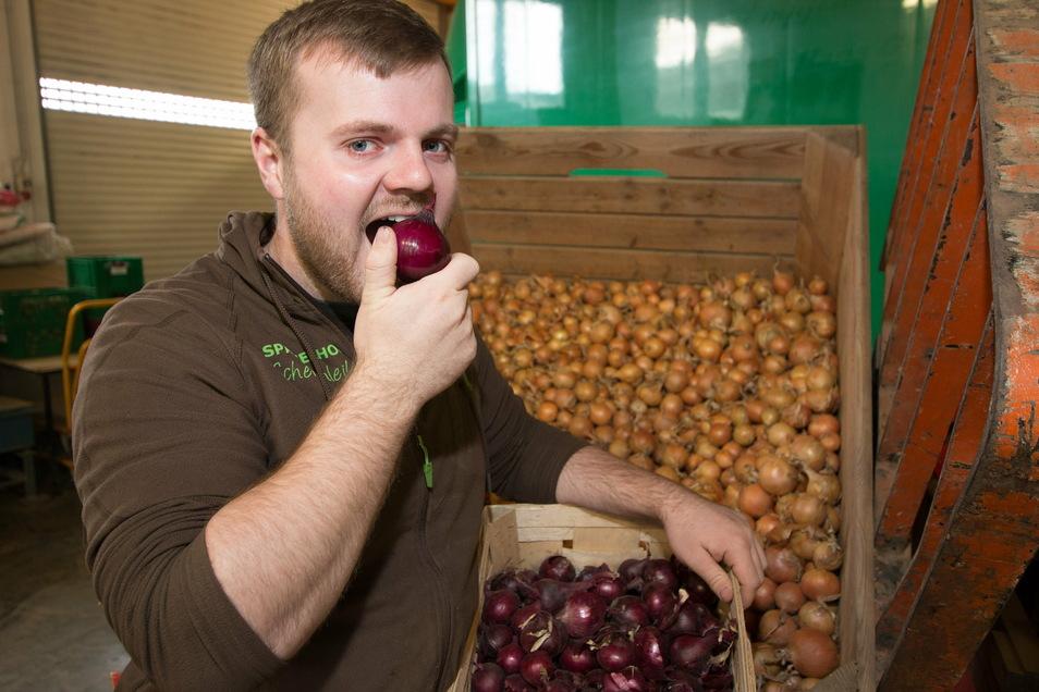 Mathias Schertenleib wird auch weiterhin, wie seine Eltern bisher, rote und gelbe Zwiebeln anbauen. Wegen der Kahlfröste während der Eisheiligen und der Trockenheit ist der Ertrag gering, Pflanzen sind eingegangen.