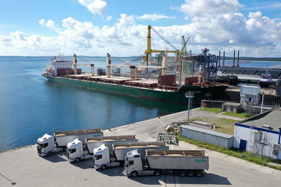 Vier Lastwagen mit Getreide stehen am Kai in Mukran bei Sassnitz. Der Hafen wird nun ausgebaut, damit Weizen aus Sachsen in größeren Mengen nach Afrika verschifft werden kann.