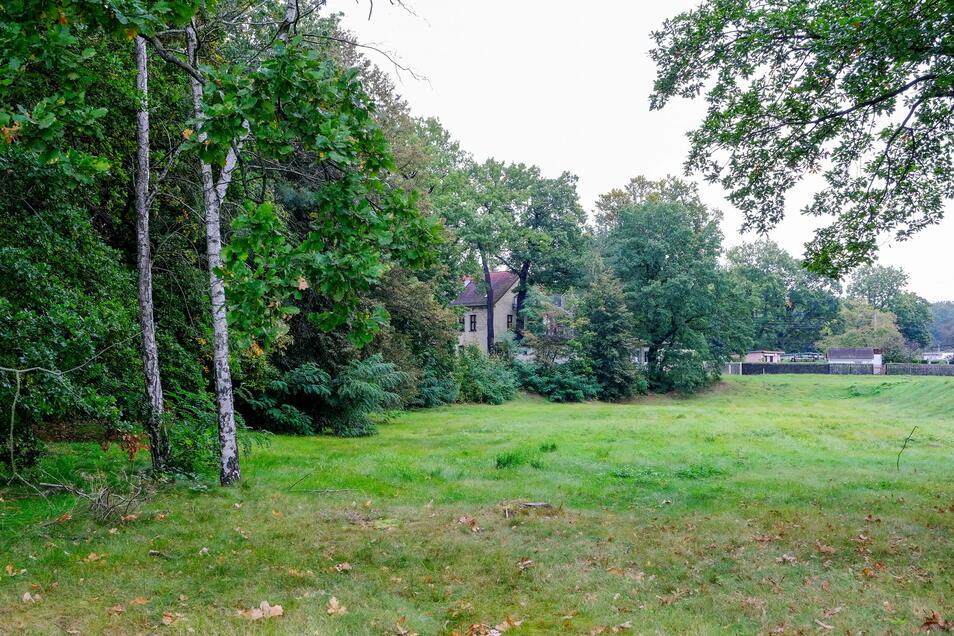 """Die Brachfläche zwischen Meißner Straße, Anne-Frank-Schule und der Kleingartensiedlung """"Am Waldrand"""" gehört dem Landkreis Meißen. Auf der Wiese soll das neue Schulhaus entstehen."""