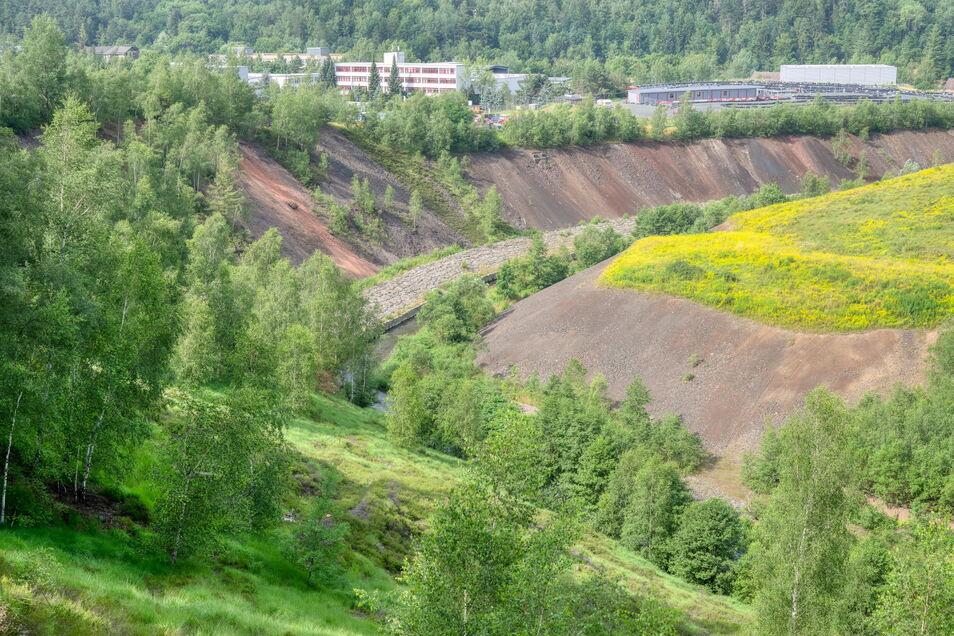 Steil und weitestgehend kahl fallen die Schlackehänge in Muldenhütten zur Freiberger Mulde ab.