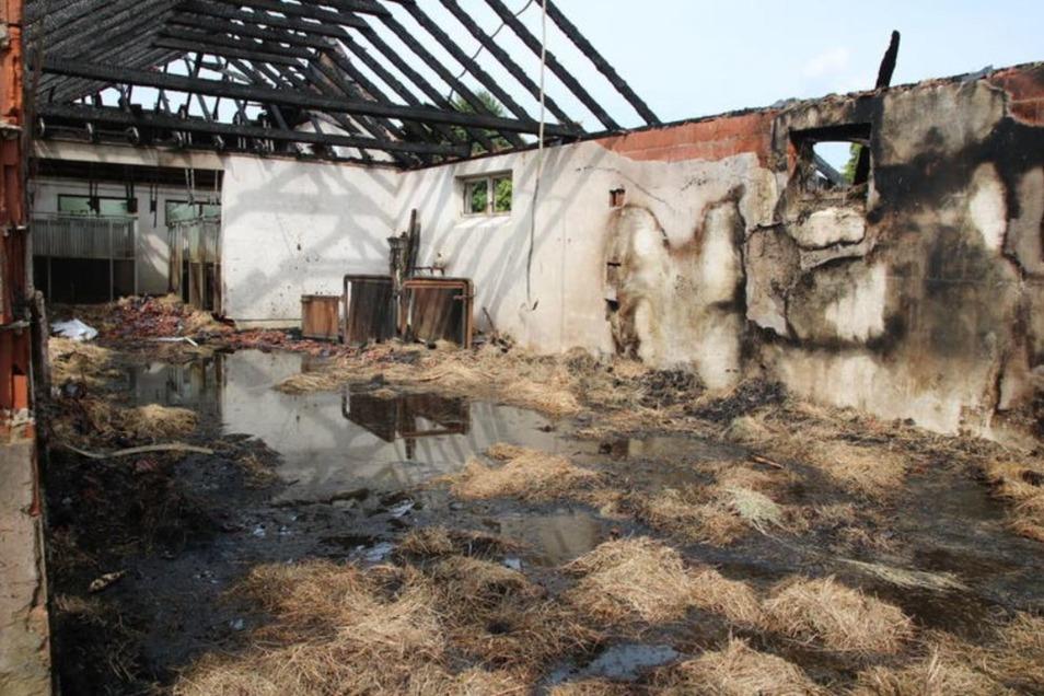 Mit viel Wasser aus den Tankern wurde das Gebäude abgelöscht. Hier waren vor allem Heu und Stroh gelagert gewesen.