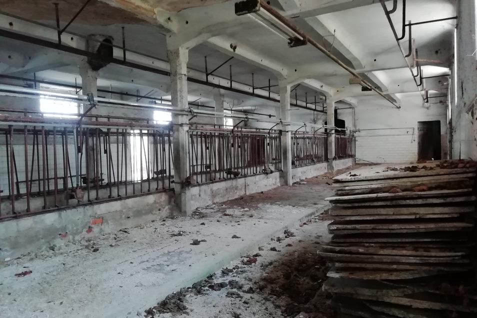 Im ehemaligen Kuhstall wurden Styropor und Asbest entsorgt– fein säuberlich wurden die Abfälle hier aufgestapelt.