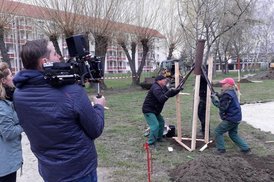Ein Kamerateam besuchte Gröditz am 13. April und filmte, wie der Klimapark von Mitarbeitern des Bauhofs errichtet wurde.