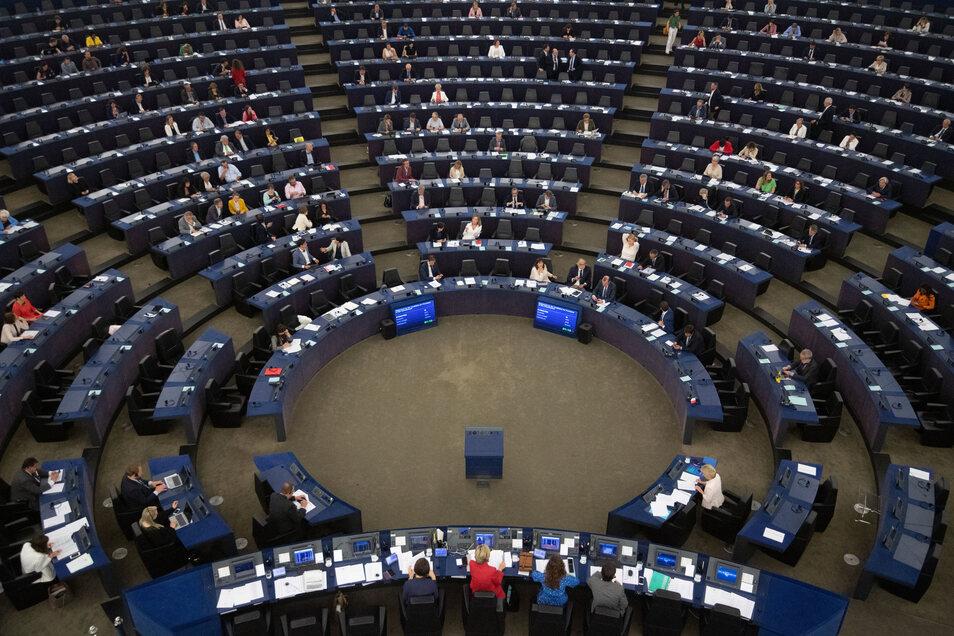 Abgeordnete im Europaparlament