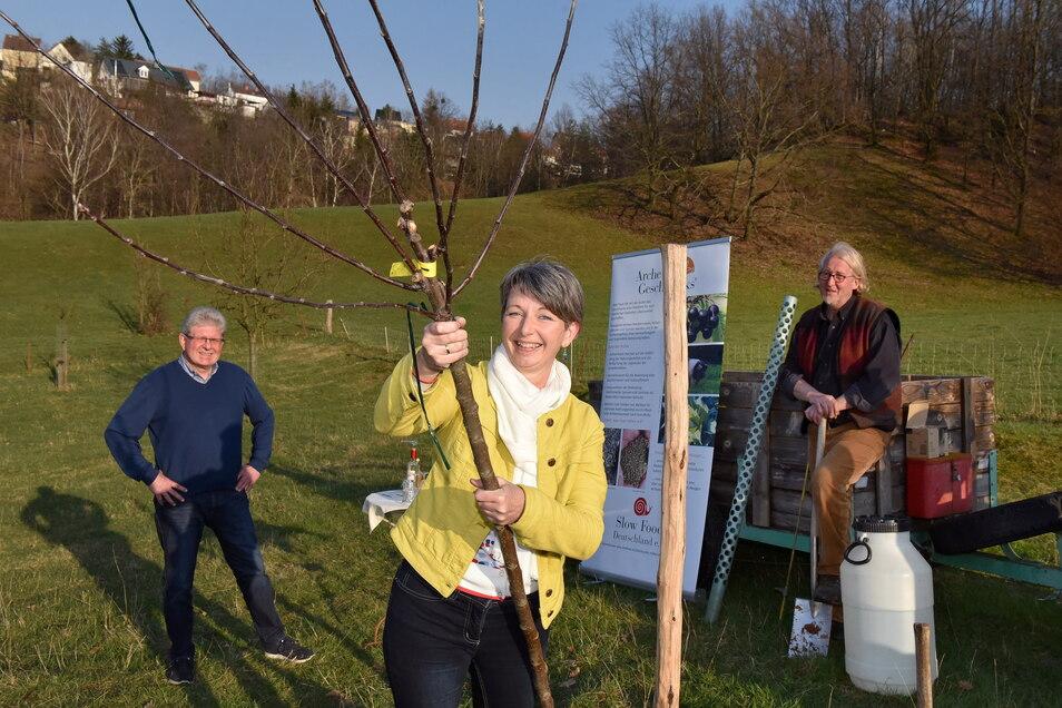 Langsam wächst der Apfel am Baum. Heike Quendt und Hartmut Freter von Slow Food Dresden pflanzen auf der Wiese von Holger Stein (rechts) in Freital eine alte Sorte.