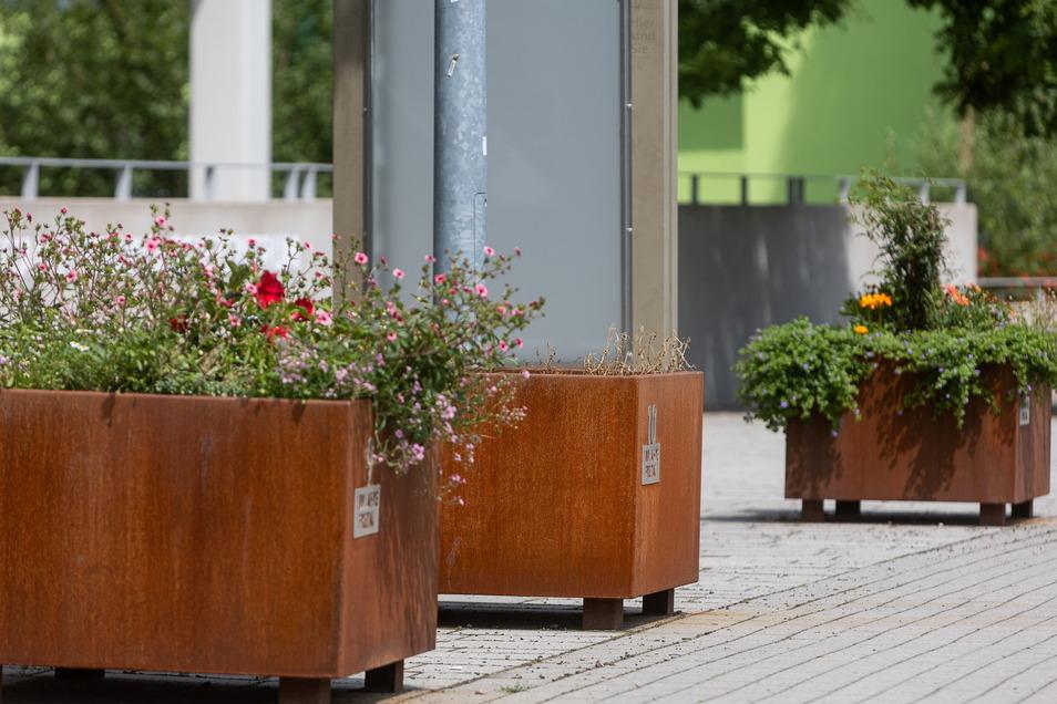 Rostbraune Optik: Es gibt Kritik an den neuen Pflanzkübeln in der Stadt.