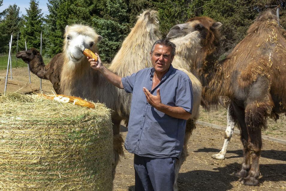Brot, Kraftfutter und Heu: In den vergangenen Wochen sei viel Futter gespendet worden, sagt Zirkusdirektor Bernhard Schmidt.