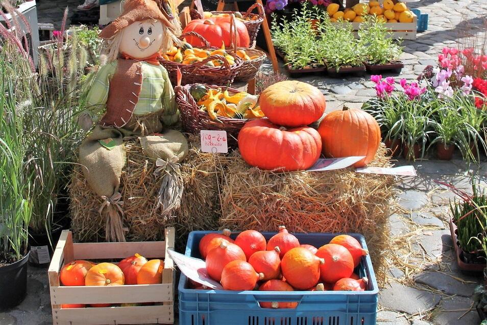 Auf dem Herbstmarkt in Bischofswerda werden verschiedenste Waren angeboten.