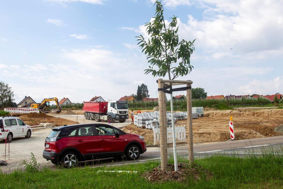Noch ist es Baustelle. Doch bis Dezember soll der Kreisverkehr Gamig fertig sein.