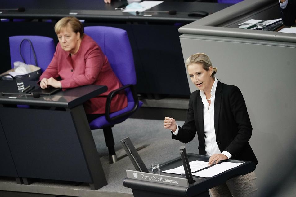 """Alice Weidel, Co-Vorsitzende der AfD-Bundestagsfraktion, sprach im Bundestag von """"Kopftuchmädchen"""", """"Messermännern"""" und """"sonstigen Taugenichtsen""""."""