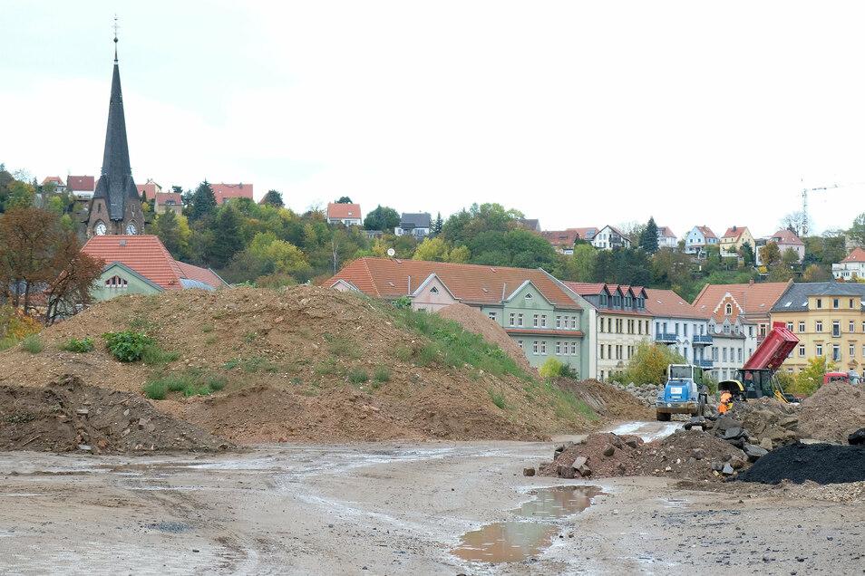 Die Schuttberge verschwinden. Im nächsten Jahr wird der ehemalige Kohlelagerplatz neu gestaltet. Hier soll der Bürgerpark Triebischtal entstehen.