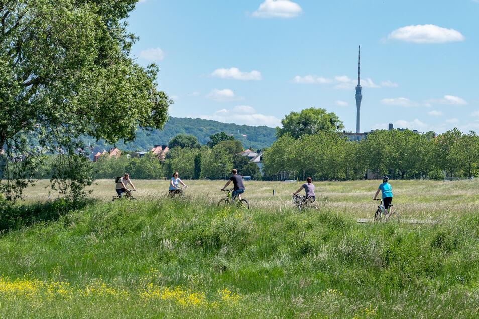 Sachsens Radwege werden neu beschildert.