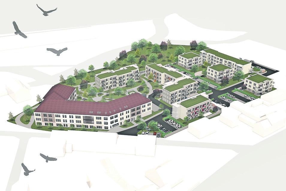 So soll es mal aussehen, das neue Radeburger Wohngebiet am Hofwall, links das Pflegeheim.