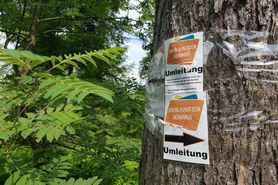 Weil einige Waldwege im Oberland infolge intensiver Forstarbeiten in einem bedauerlichen Zustand sind, empfiehlt die Touristische Gebietsgemeinschaft Oberlausitzer Bergland Wanderern auf bestimmten Etappen Ausweichstrecken.