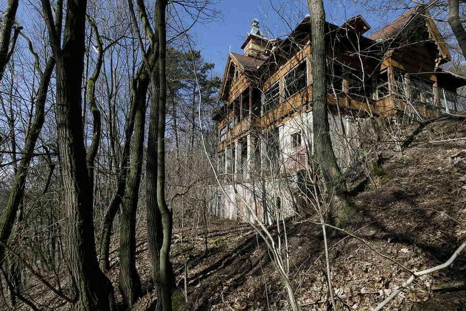 Das Görlitzer Weinberghaus ist zugewachsen. Vor einer Wiedereröffnung müsste die Sichtachse freigesägt werden.