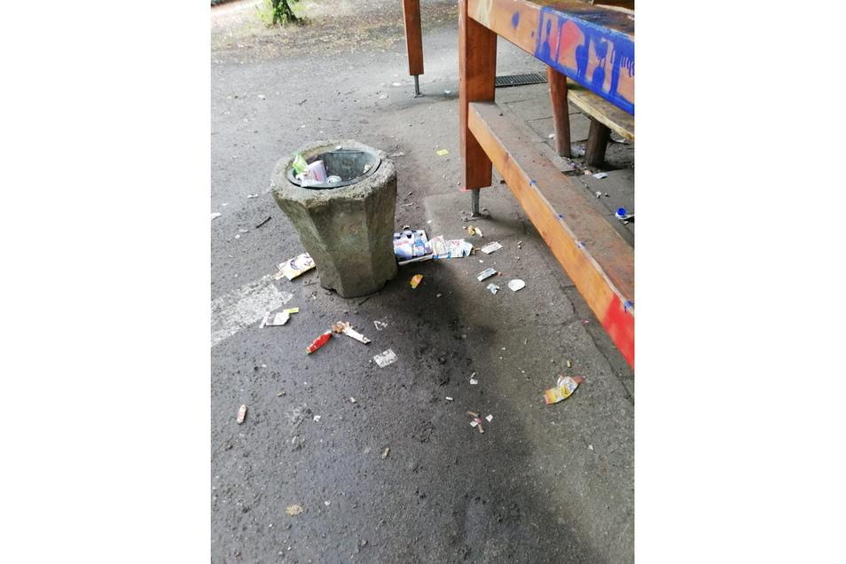 An Papierkörben mangelt es nicht, aber der Abfall liegt oft daneben. Hinzu kommen Schmierereien wie hier an den Balken des Pavillons am Rosensportpark.