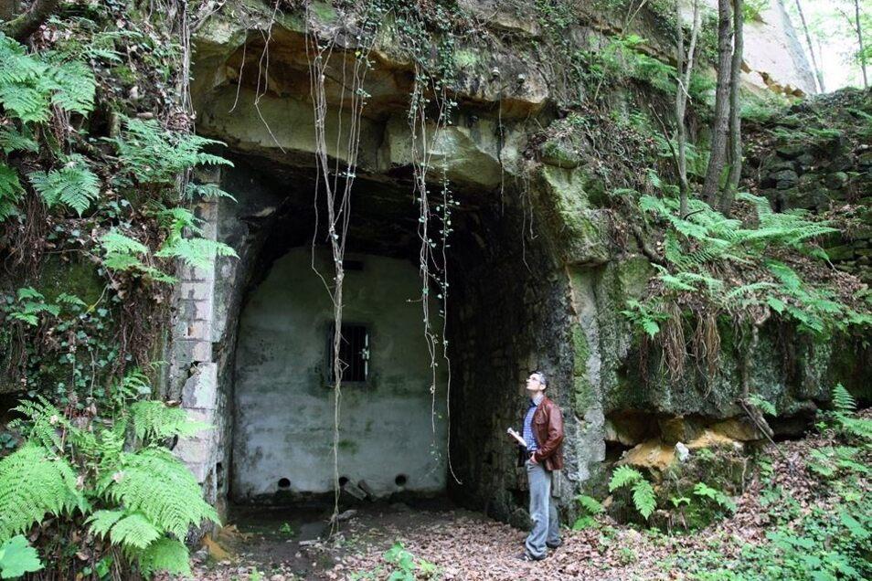 """Von der Schatzkammer zum verlorenen Ort: Der Großcottaer Eisenbahntunnel war im Zweiten Weltkrieg der Bergungsort """"T"""". Seit 1989 ist er zugemauert. Im Foto der Tunnelmund im Lohmgrund."""