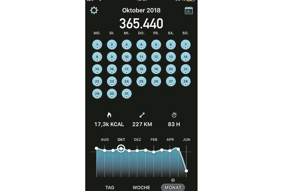 Die App, die alles zählt: Jeder volle Kreis steht für mindestens 10 000 Schritte. Nach einem Jahr liegt mein Tagesschnitt bei rund 11.000.