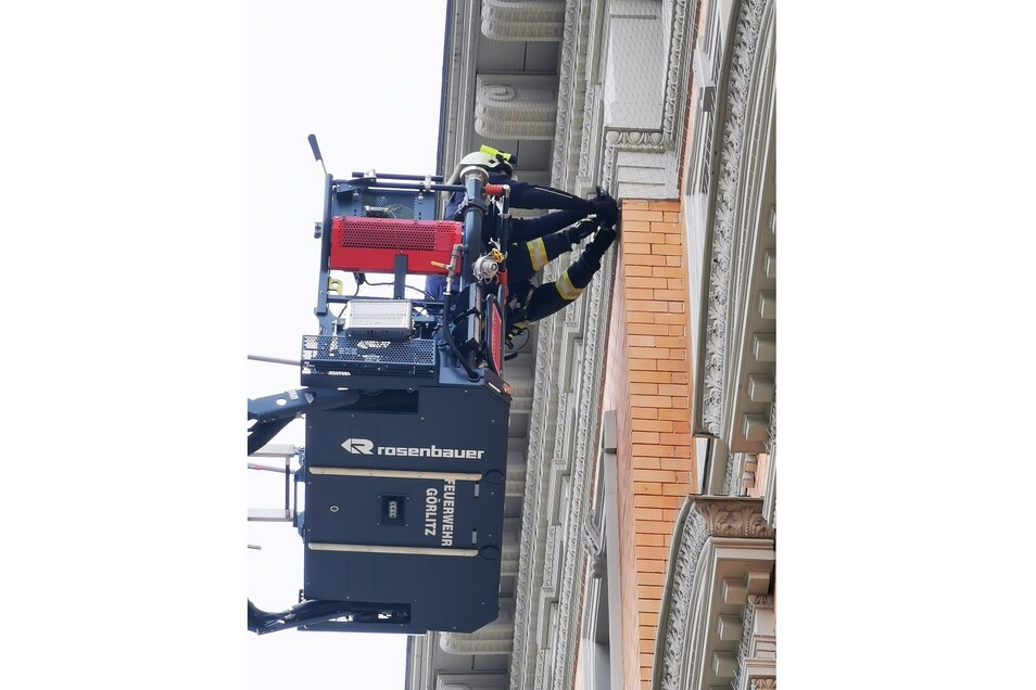 Die Rettung gelang den Feuerwehrleuten, ohne das Netz zu zerschneiden.