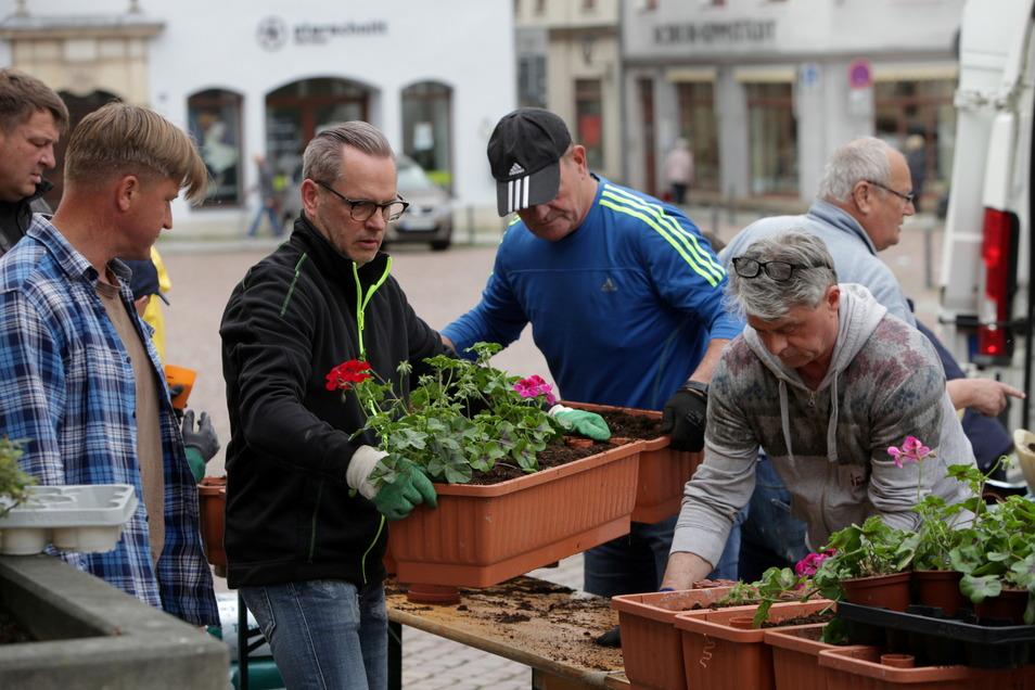 Die Freien Wähler bei der Pflanzaktion auf dem Pirnaer Markt: Sven Vater, Martin Förster von der Gärtnerei Lohse, Ralf Thiele, Ralf Böhmer, Uwe Seidel und Dieter Fuchs (v.l.).