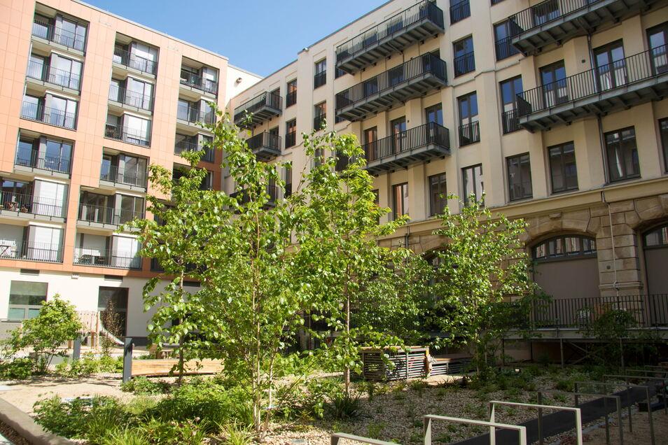 In Dresden sind in den letzten Jahren Tausende neue Wohnungen entstanden.