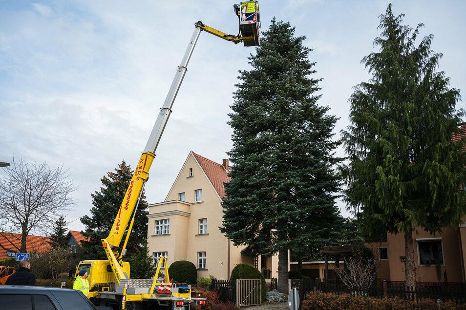 ... im Görlitzer Stadtteil Biesnitz