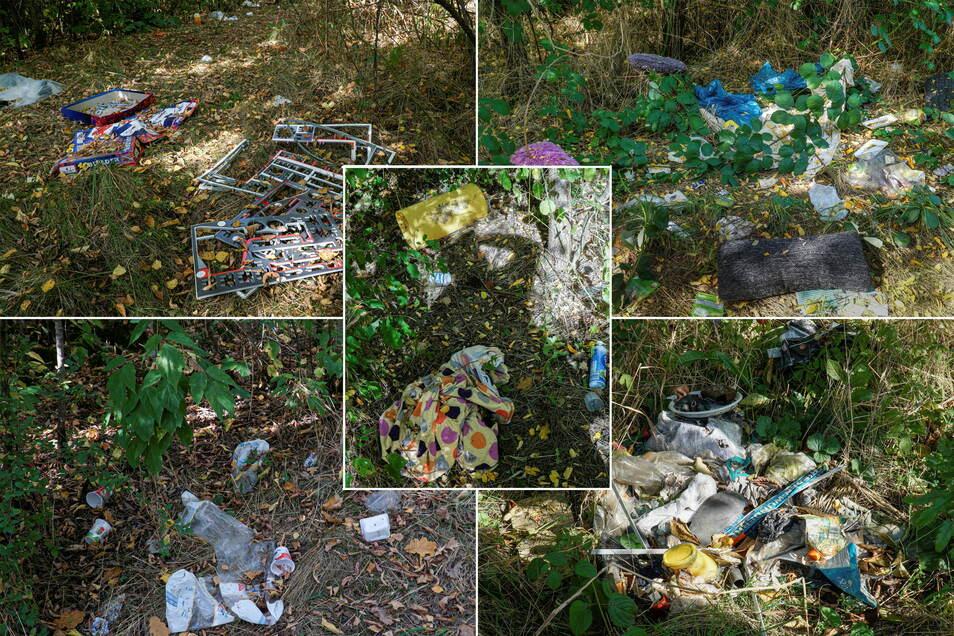 Möbel, Fässer, Holzreste, diverse Plaste - all das liegt nah beieinander in einem Wäldchen hinter dem Bautzener Marktkauf-Areal. Für das Landratsamt ist das noch keine wilde Müllkippe.