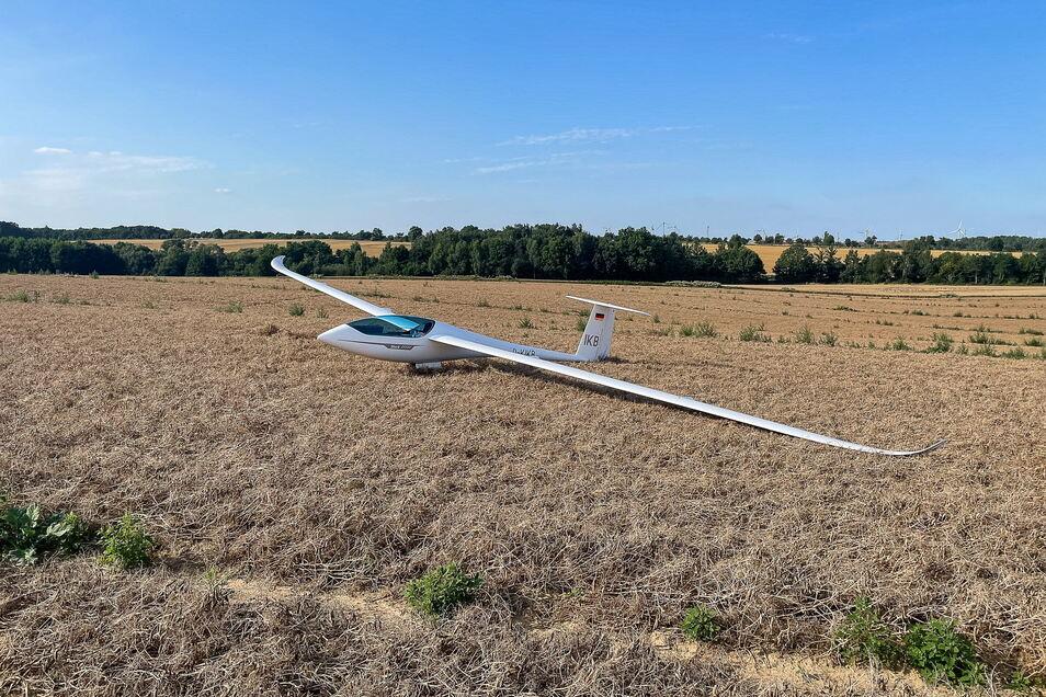 So sah es aus, als Heinz-Dieter Schüch mit seinem Segelflugzeug in einem Erbsenfeld gelandet ist.