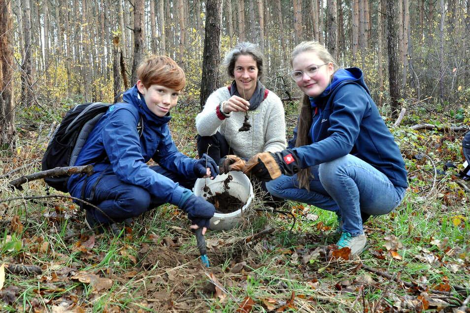 Sigrid Porstendorfer hat eine Tochter an der Dresdner Waldorfschule und hilft gemeinsam mit Mascha und Leopold bei der Pflanzaktion.