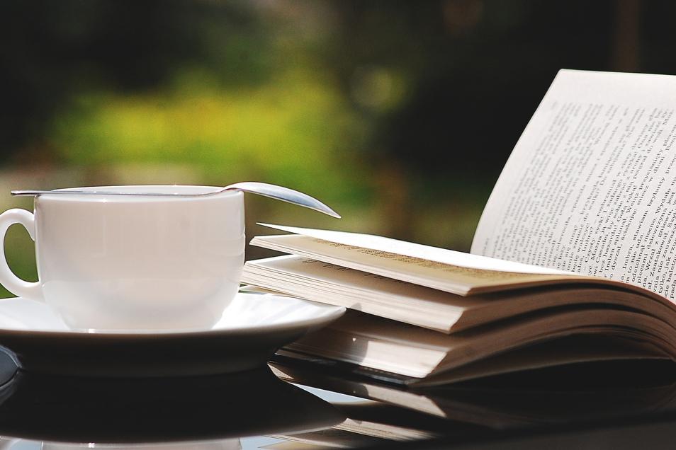 Eine Tasse Kaffee und ein gutes Buch: Im Gröditzer Dreiseithof wird jetzt ein Lesegarten geschaffen.