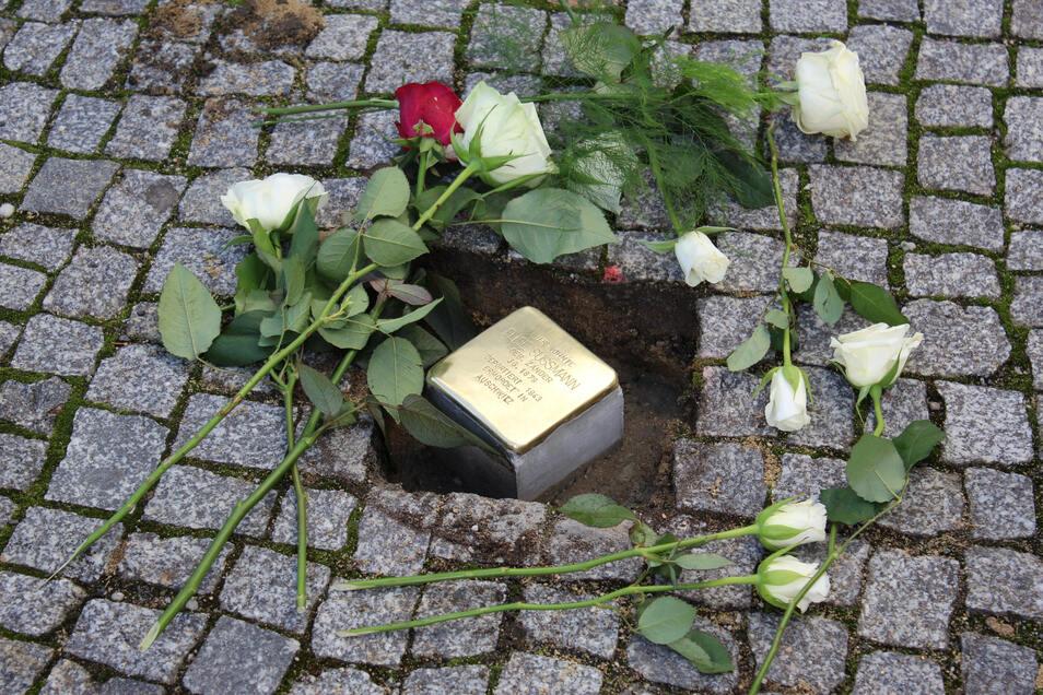 Der Stolperstein zur Erinnerung an die Jüdin Elise Sussmann wurde im Dezember vergangenen Jahres in der Bautzener Töpferstraße verlegt. Zum 8. Mai legt der SPD-Ortsverein an dieser Stelle Blumen nieder.