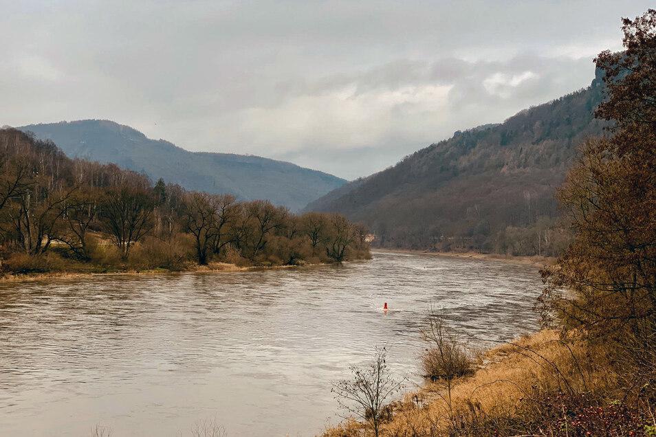 Gemächlich fließt die Elbe wie hier bei Hrensko (Herrnskretschen). Doch die Idylle trügt: Seit Jahren soll im nahegelegenen Decin eine Staustufe gebaut werden.