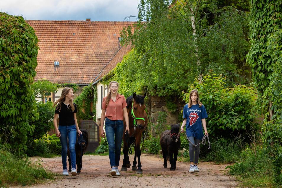 Idylle im Käbschütztaler Luminohof: Helene, Louise und Lilli (v.l.) führen Pferd und Ponys aus. Der Vierseithof ist nicht nur Familiensitz, sondern beherbergt auch Ferienwohnungen. Die Saison in Corona-Zeiten kann jetzt endlich starten.